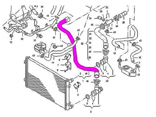 vw beetle 1 9 radiator hose lower to water pump